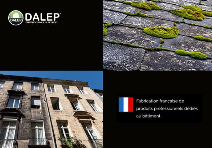 dalep-antimousse-curatif-preventif-comptoir-des-peintures-reims