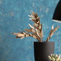 Papier-peint-beton-caselio-reims-comptoirdespeintures